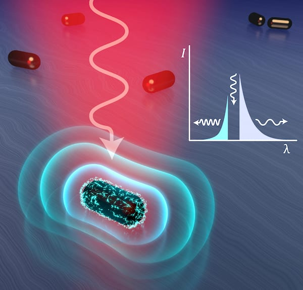 Plasmonic pioneers fire away in fight over light