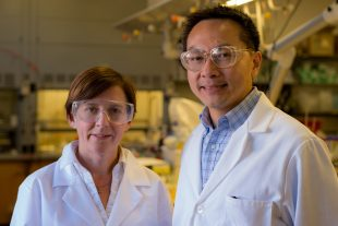 Rice U.'s one-step catalyst turns nitrates into water and air